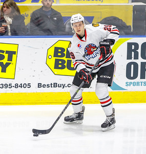 IceHogs vs Bulldogs 12-30-14