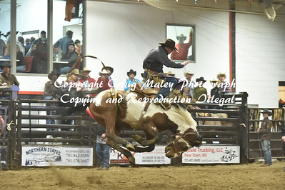 SHORT GO SADDLE BRONC 3-23-2019