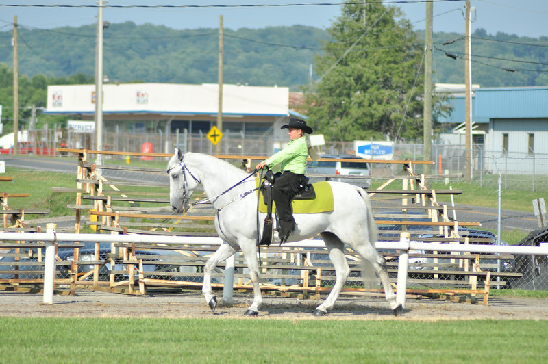 horseshow-sweetwater-0077.jpg