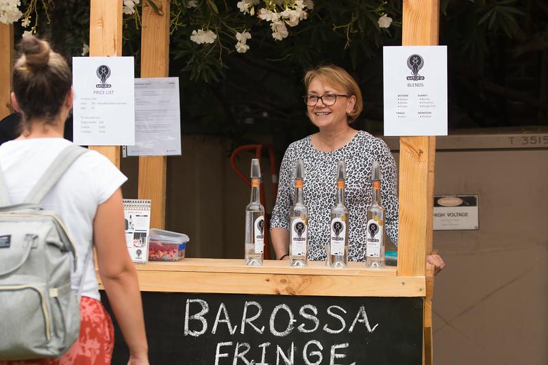 BarossaFringe-LaunchParty-CreditNathanielMason-Y-0148.jpg