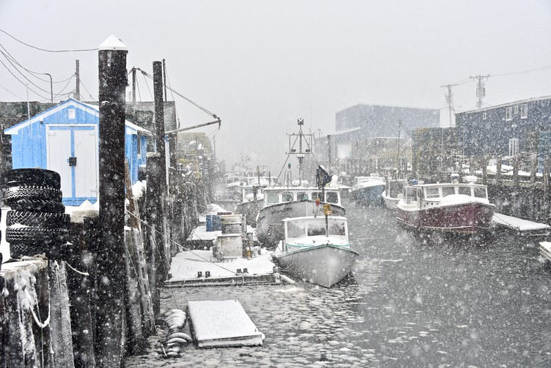 Widgery Wharf snow.jpg