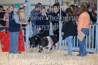 2018 KISD Swine Show Class 3