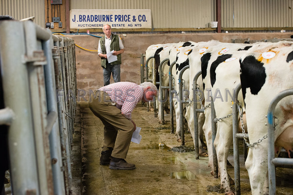 Mold Dairy Sale July 2016
