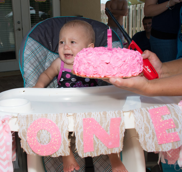 Lila's 1st Bday Party-197.jpg