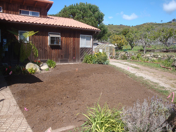 2010-04-01 Whitney Ranch Landscaping