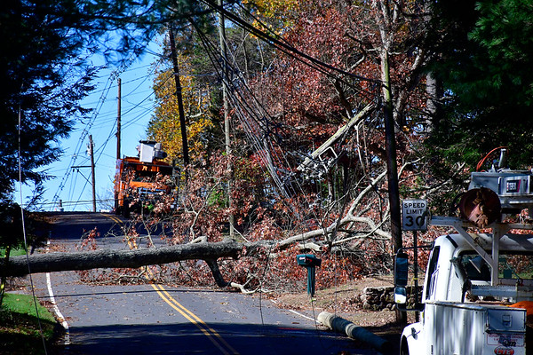 11/1/2019 Mike Orazzi | StaffrUtility crews work to restore power on Shrub Road after high winds caused a large to fall across the roadway early Friday morning.