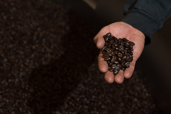 Rie Coffee Bean Inspection