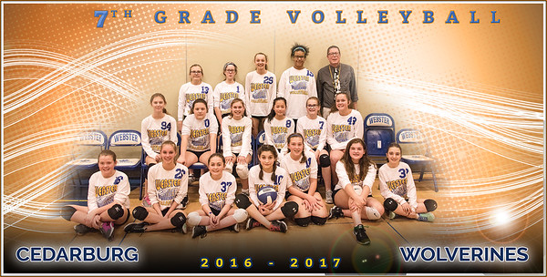 Webster Volleyball