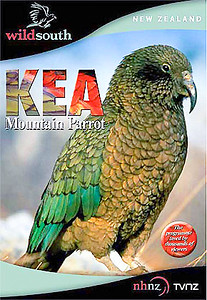 Some say the kea is a criminal. They charge the bird with more than just petty theft and vandalism, they accuse it of murder.  A documentary classic produced and directed by Rod, it became one of the most viewed programmes on NZ On Screen.  DVD 52mins  RRP NZ $39.99