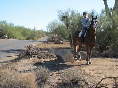 Equestrian Trails