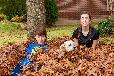 Kids playing in leaves 2015