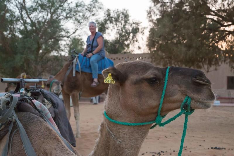 160924-130331-Morocco-0134.jpg