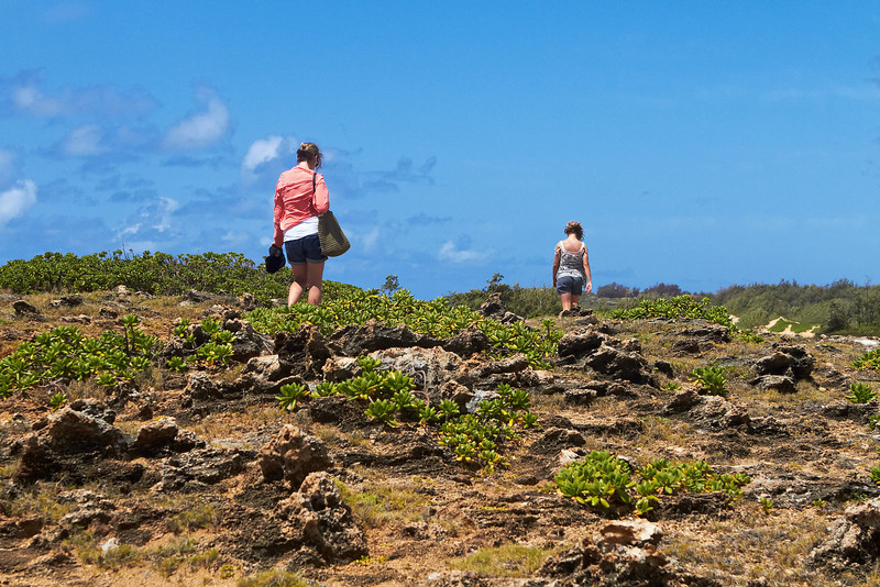 Hawaii959.jpg