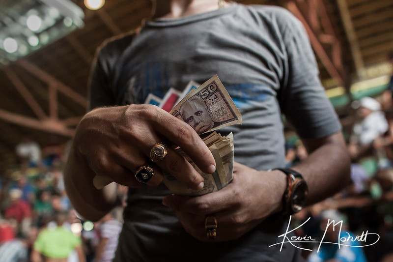 A bookie steps into the ring between cockfights to collect bets at an arena in a rural area 20 minutes outside of La Palma, Cuba on July 17, 2016.  Betting is an integral part of the sport.