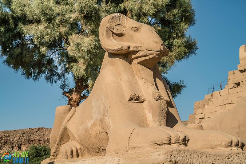 Karnak-03104.jpg