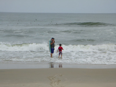 Assateague 2012