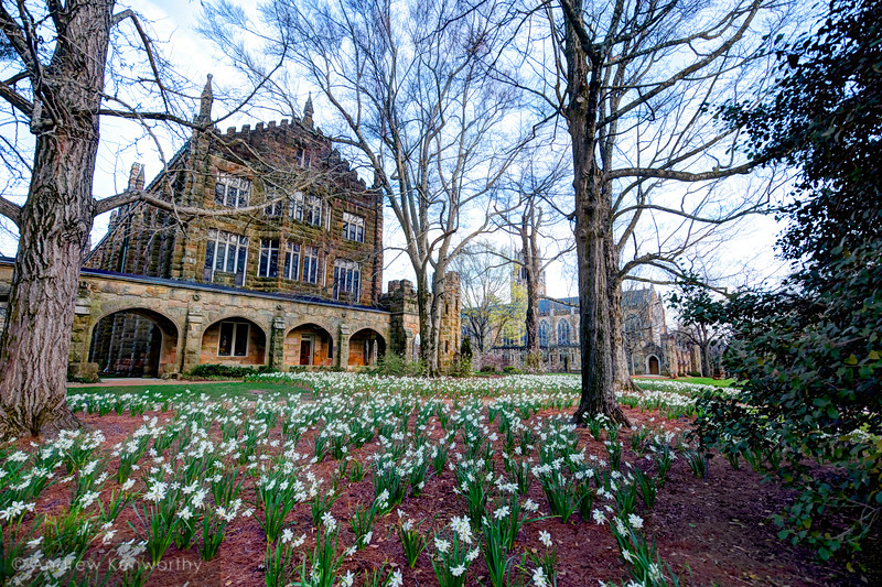 Sewanee University of the South Spring 1.jpg