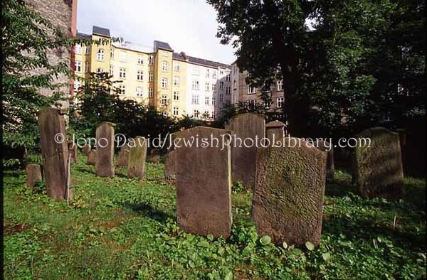 DENMARK, Copenhagen. Mosaisk Nordre Begravelsesplads cemetery (1693-1967), the oldest Jewish cemetery in Denmark. (2006)