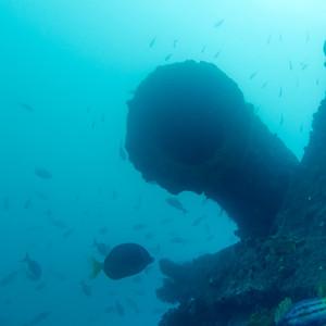 Galapagos - underwater