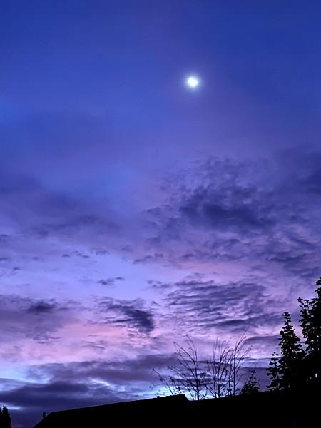 Colors at Dawn
