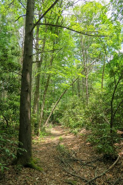 Riverside Trail -- 2,370'