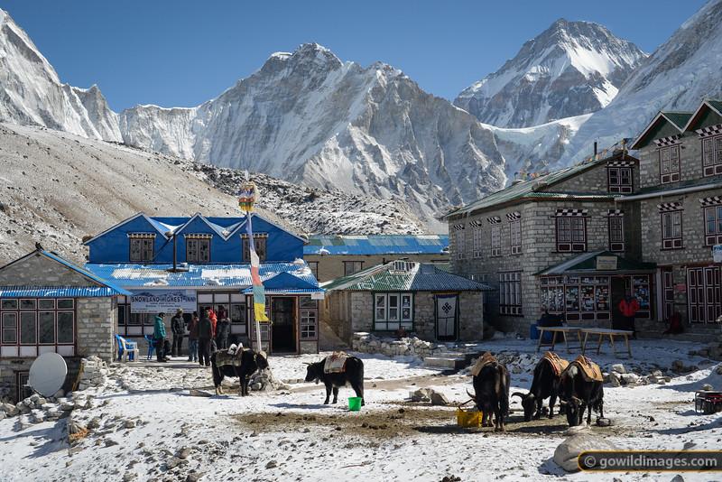 Snowland HIghest Inn and Kala Pattar Guest House, Gorak Shep