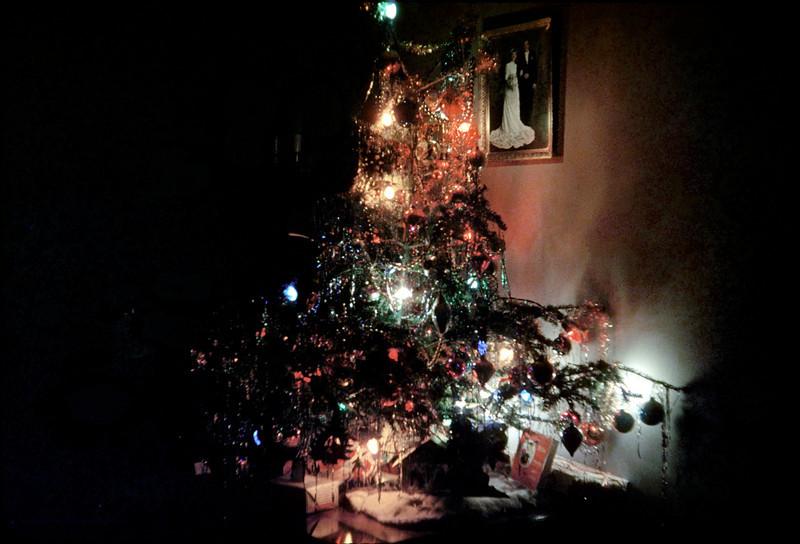 christmas tree on floor.jpg