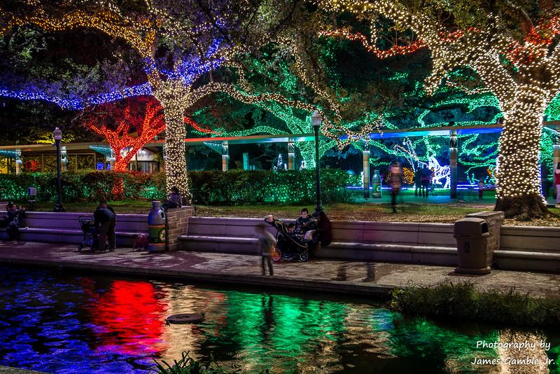 Houston-Zoo-Lights-2976.jpg