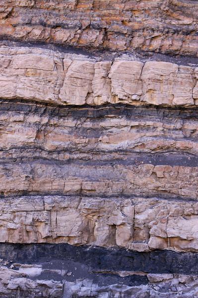 Coal seams in the Aberdeen member, near Price, Utah.