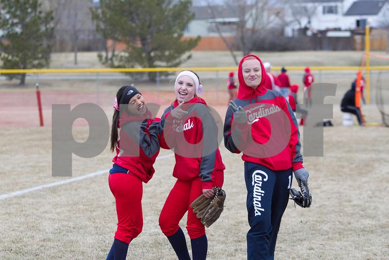 Cardinals Softball 2014