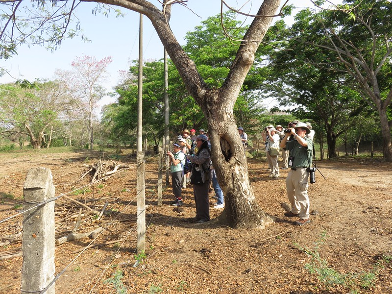 Group Cartagena