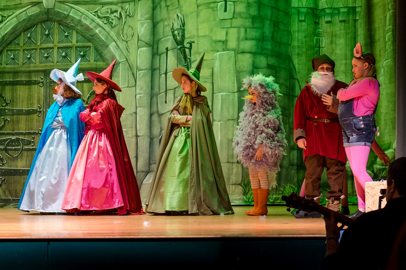 2015-03 Shrek Play 3282.jpg