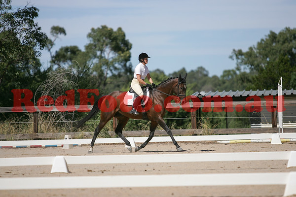 2017 03 11 Zamia Summer Series Dressage 2 Arena 2 b