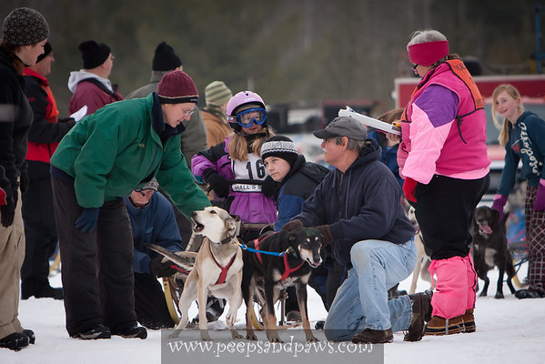 Kalkaska Dog Sled Races