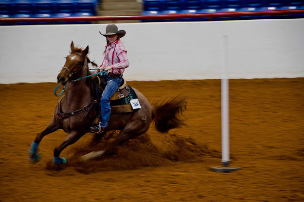 Wed 6Feb13 Stock Show