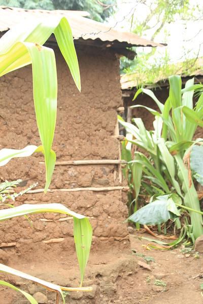 Kenya Part1 '15 444.JPG