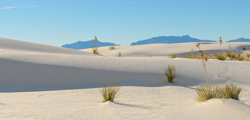 White Sands Pano