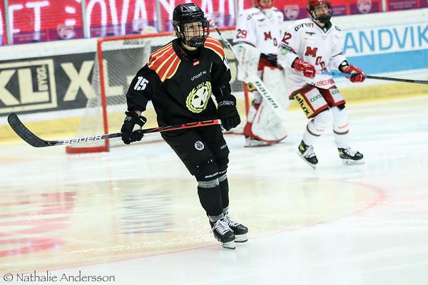 SDHL Brynäs IF – MODO Hockey 20-12-11
