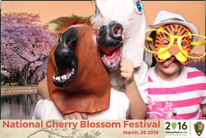 Boothie-NPS-CherryBlossom- (413).jpg