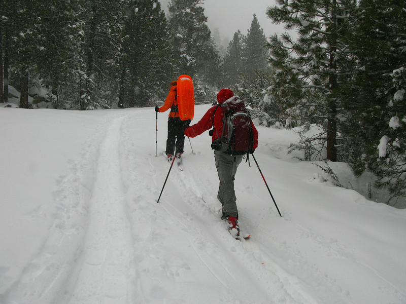 Laura and Charles skinning up the Portal Rd.
