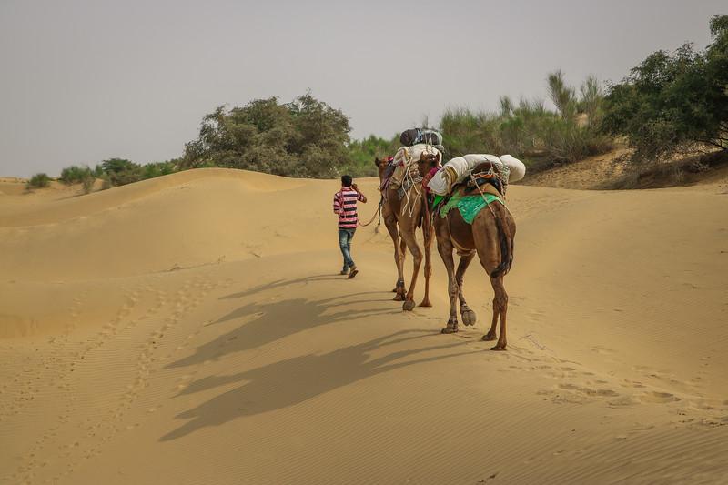 India-Jaisalmer-2019-1064.jpg