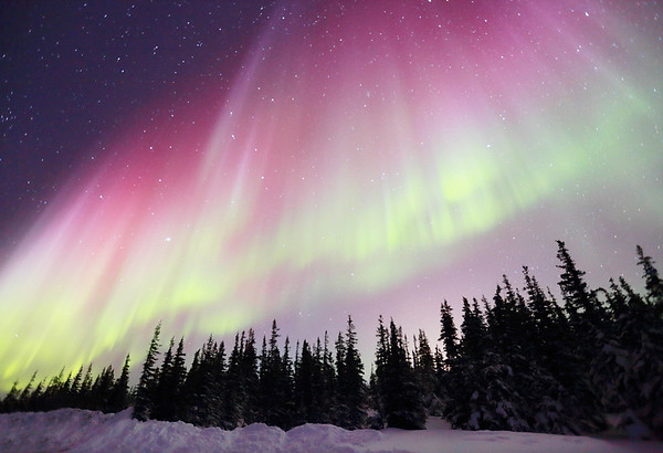Northern Lights - Churchill Manitoba