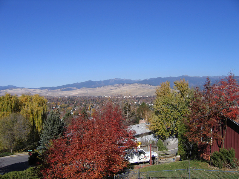 Fall colors from the South Hills