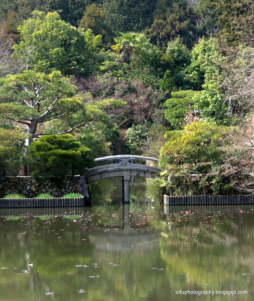 A bridge on the lake at Ryoanji Temple in Kyoto, Japan in March 2015