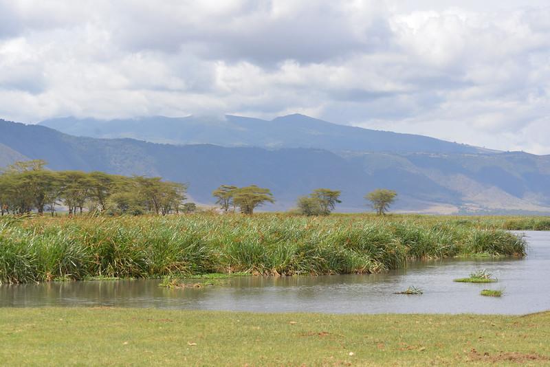 East Africa Safari 424.jpg