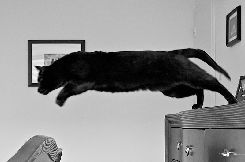 bossjump.jpg