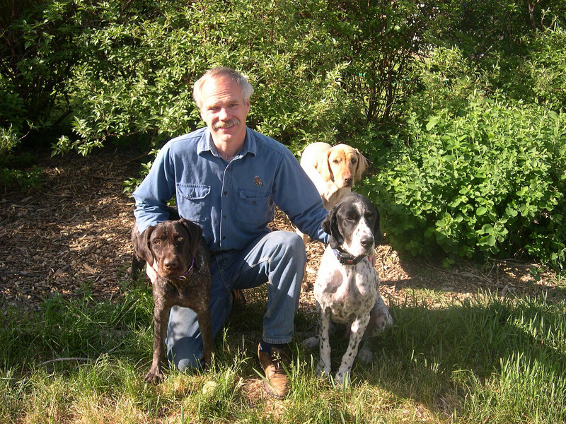 3 sleek dogs: (and one old dog)