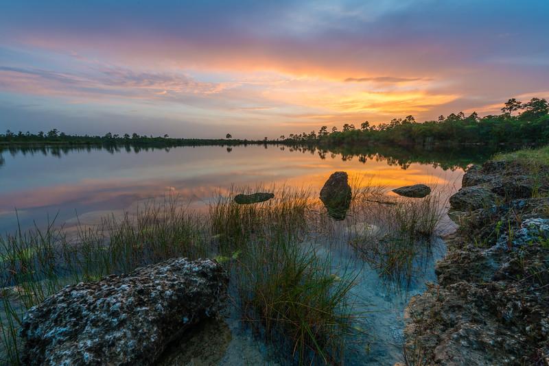 Everglades National Park-5.jpg