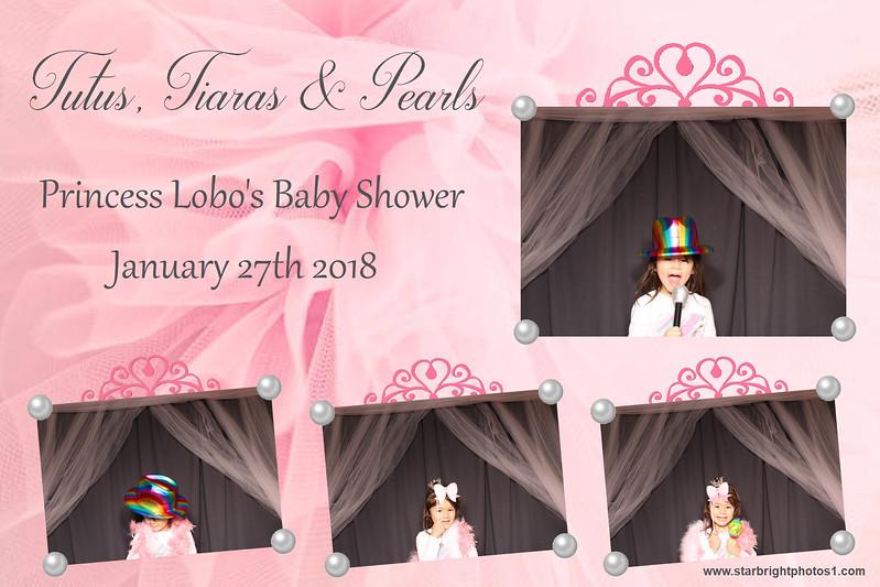 Lobo Baby Shower_12.jpg
