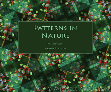 Patterns in Nature Book
